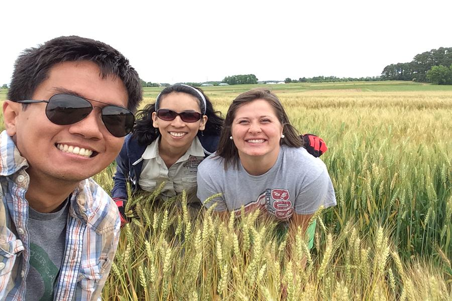 Wheat Team in the Field